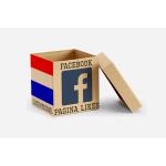 Nederlandse Facebook likes
